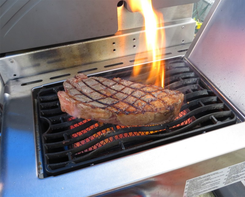 Outdoorküche Gasgrill Review : Napoleon gasgrill grill fachhandel viele grills in der