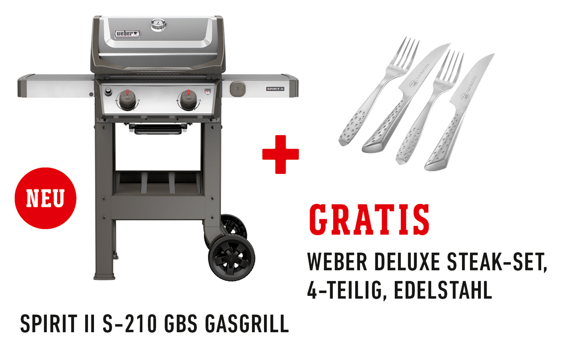 weber spirit ii s 210 gbs gasgrill edelstahl spezial set gasgrill m nchen. Black Bedroom Furniture Sets. Home Design Ideas